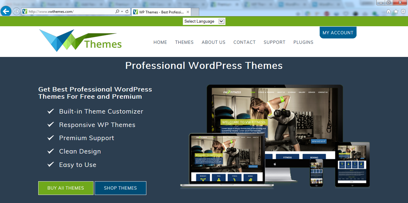 Front End of VWThemes