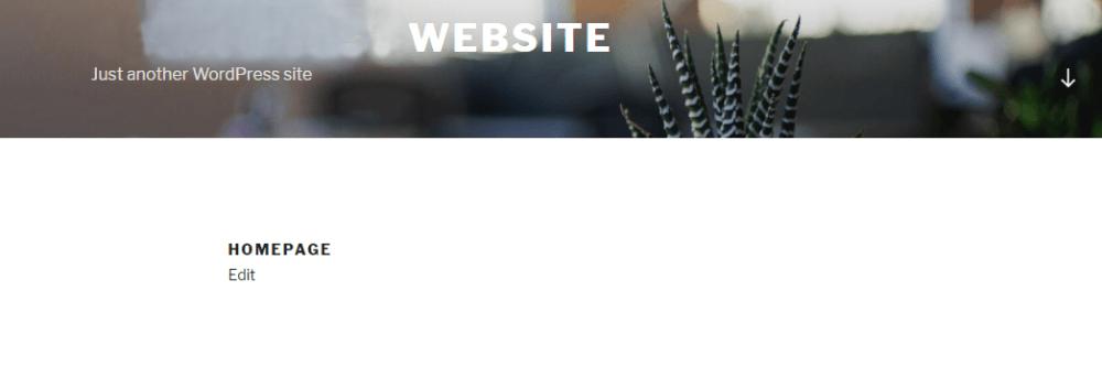 Static WordPress Homepage