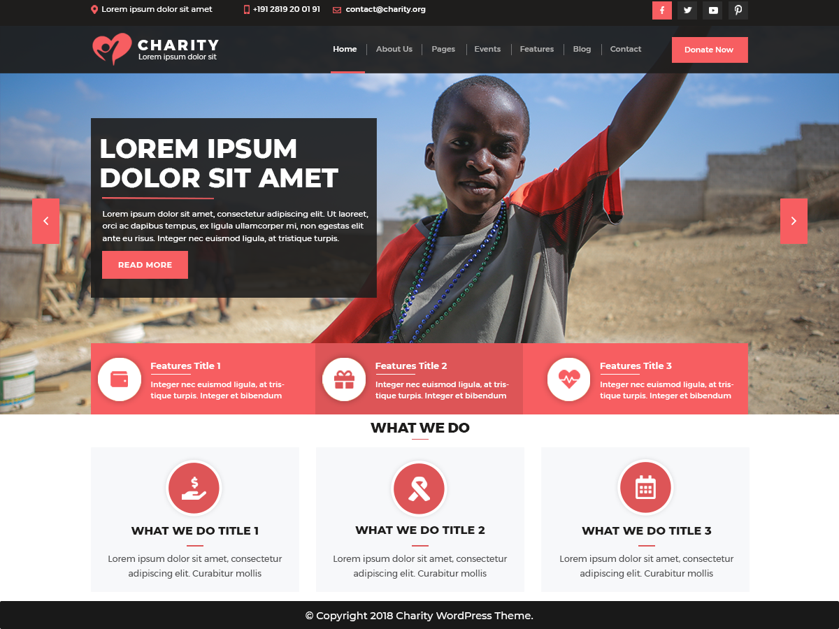 VW Charity NGO WordPress Website Themes