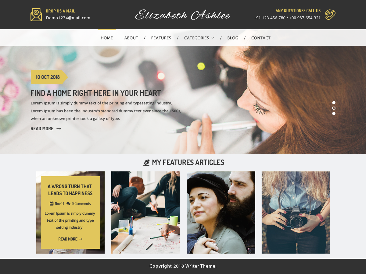 VW Writer Pro WordPress Website Themes
