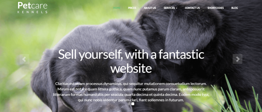 Top Petcare WordPress theme