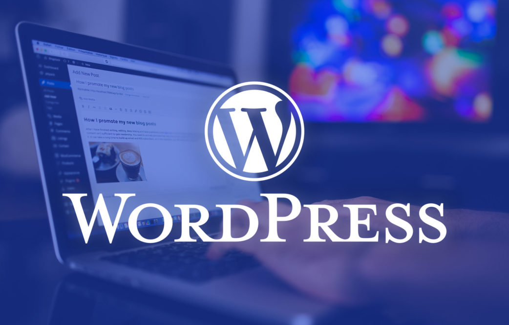Important Tips For A WordPress Developer- A Beginners Guide